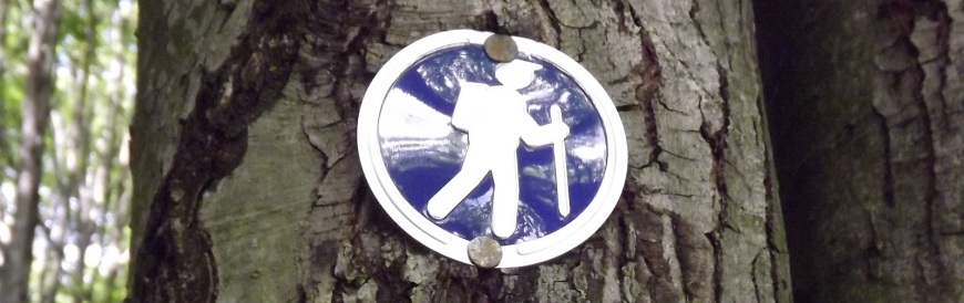 Blue Hiking Sign