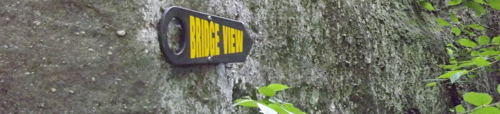 Bridge View Sign