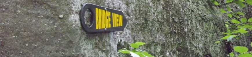 Bridge View Sign