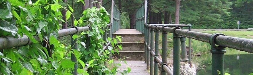 Walkway Along Lake