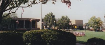 Flags in Yard 2